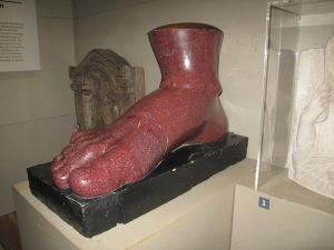 Great North Museum: Hancock giant red foot (my favourite object!)